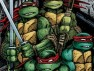 Teenage Mutant Ninja Turtles Books a Ski Resort