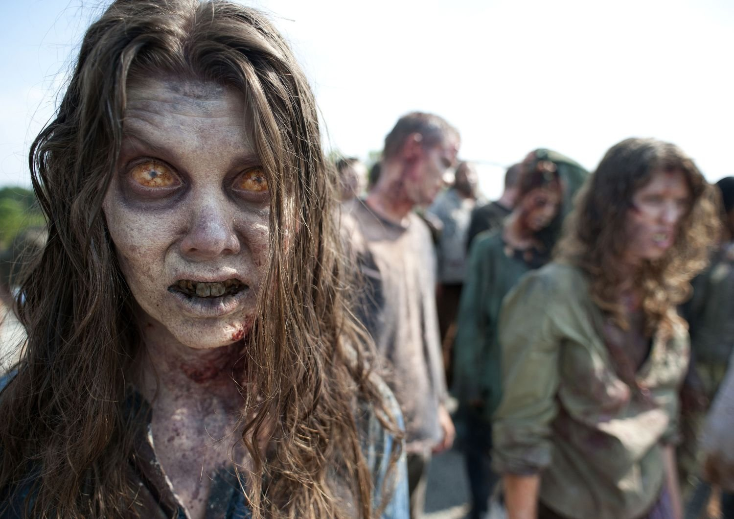 walkin dead zomzoms