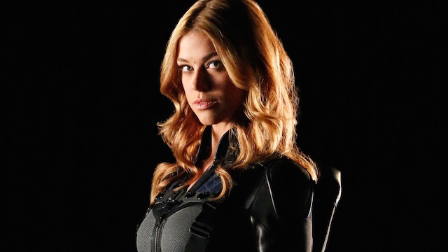 """ABC has plans to shoot a pilot titled """"Marvel's Most Wanted"""". It will follow the adventures of Adrianne Palicki's Bobbi Morse and Nick Blood's Lance Hunter."""