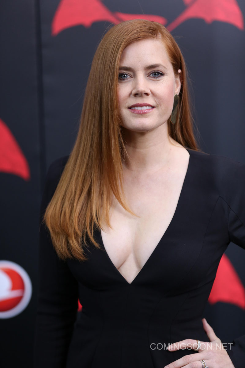 New York premiere of Warner Bros. Pictures' 'Batman v Superman: Dawn of Justice' at Radio City Music Hall - Arrivals Featuring: Amy Adams Where: New York, United States When: 20 Mar 2016 Credit: Andres Otero/WENN.com