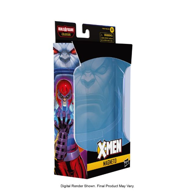 Magneto package