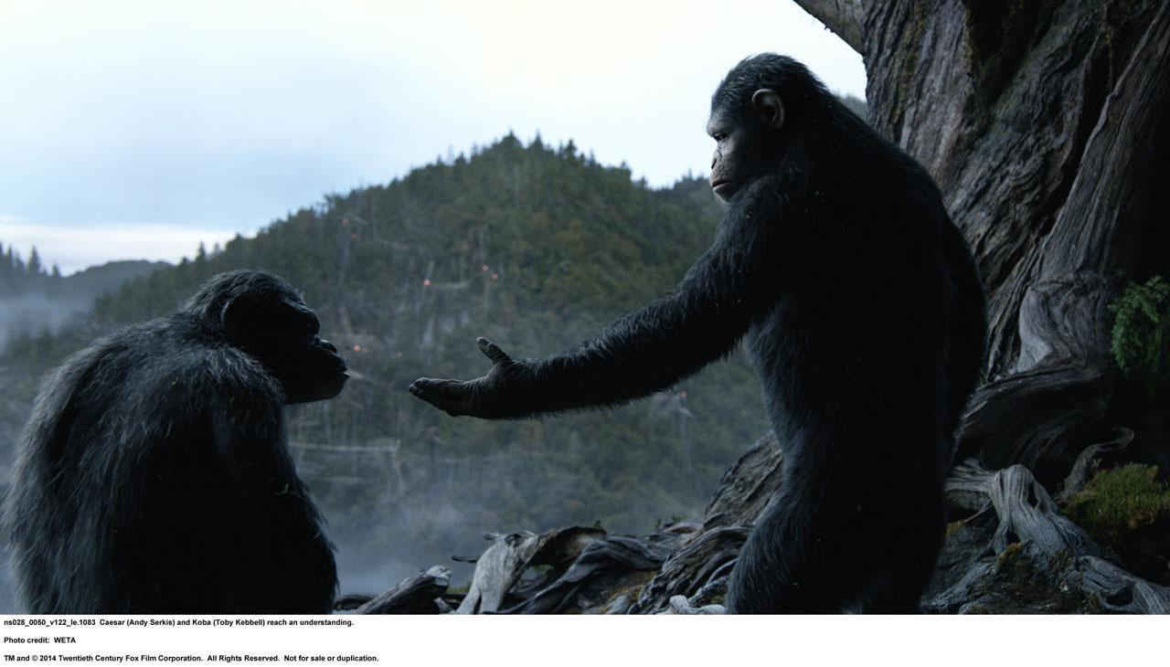 hr_dawn_of_the_planet_of_the_apes_15
