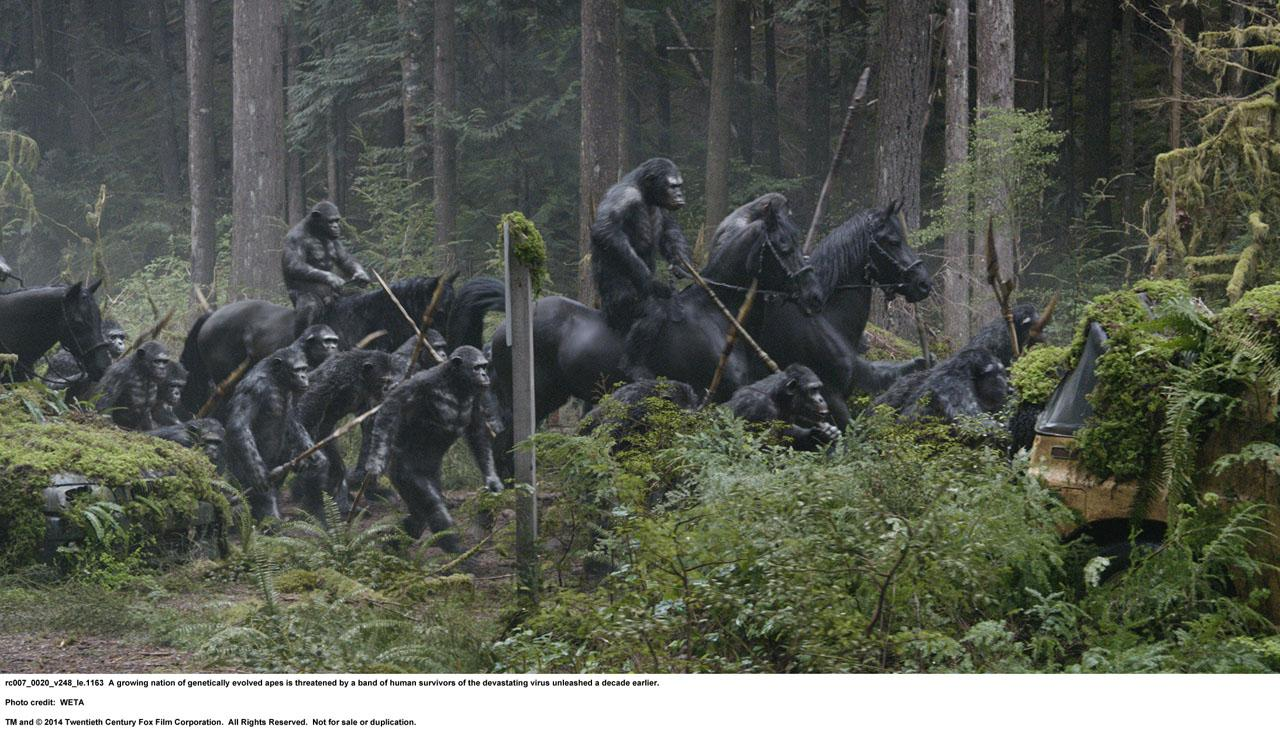 hr_dawn_of_the_planet_of_the_apes_16