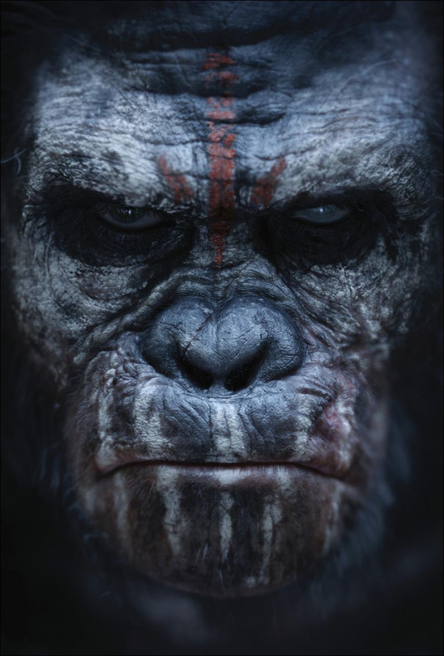 hr_dawn_of_the_planet_of_the_apes_4